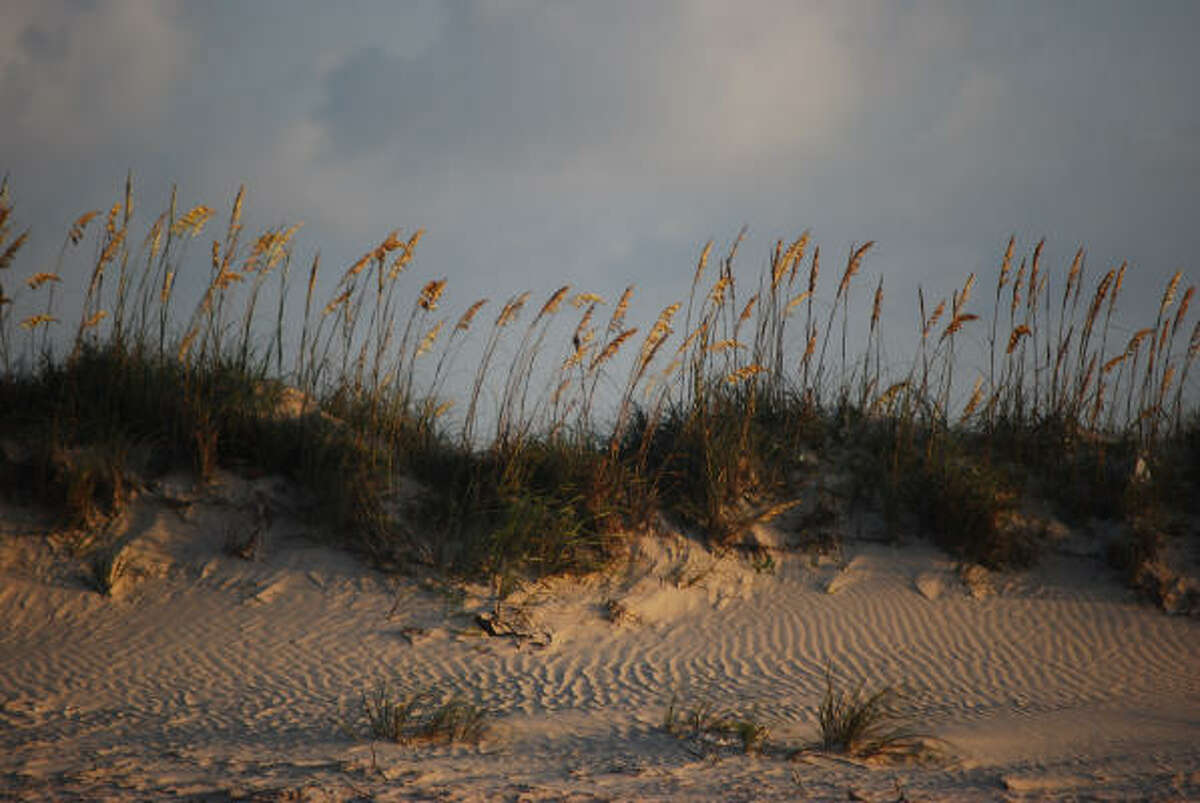 Sea oats wave gently atop the dunes on East Bay in Matagorda County. Tourists are beginning to discover the area's charms.