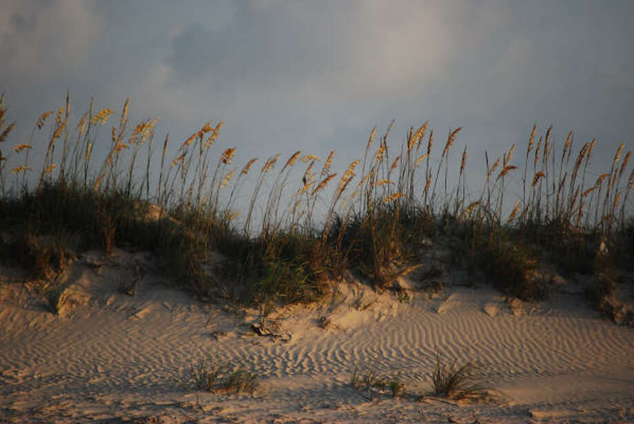 Sea oats wave gently atop the dunes on East Bay in Matagorda County. Tourists are beginning to discover the area's charms. Photo: Tracy L. Barnett