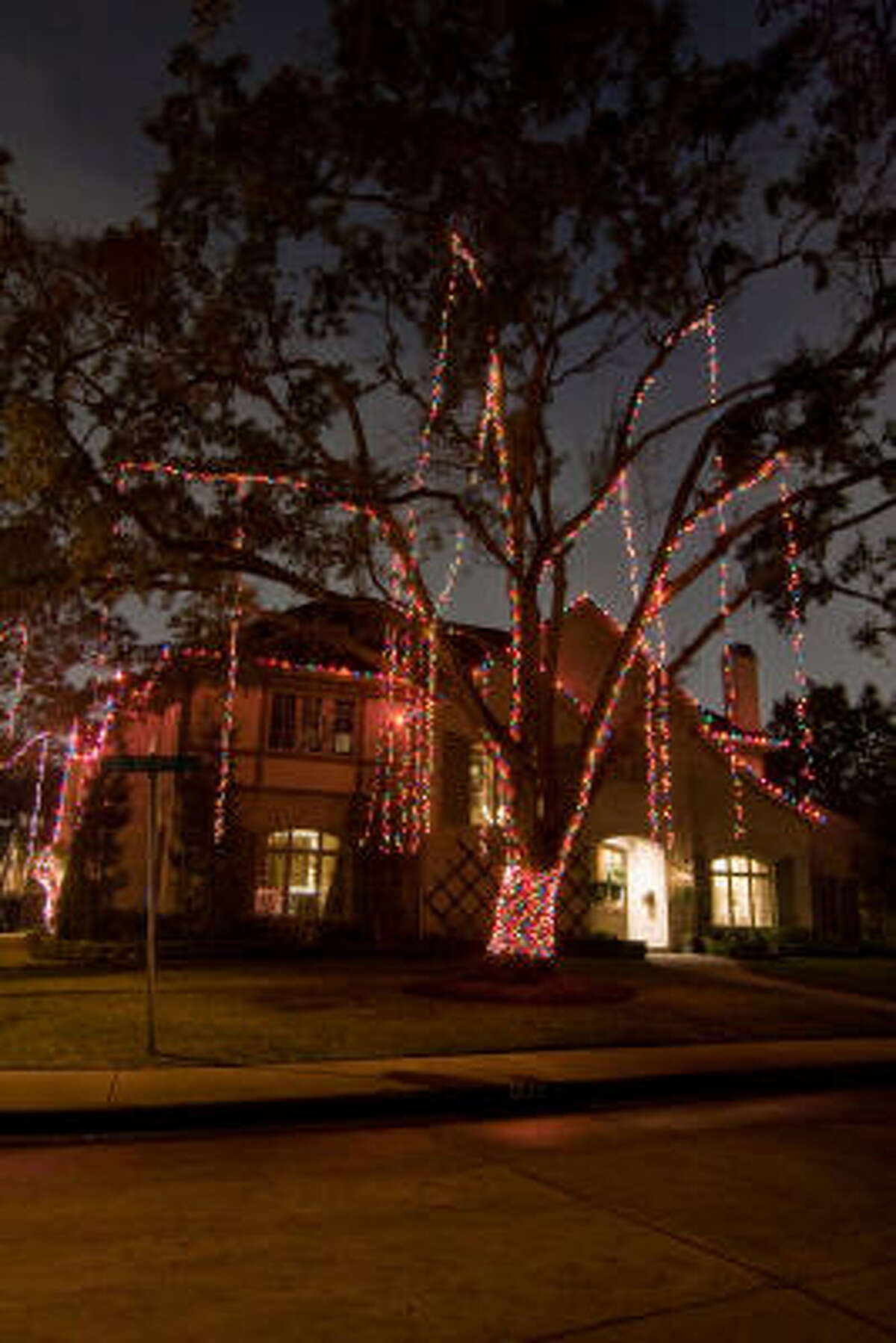FULL OF COLOR: Several residents in the Briar Grove area have adopted the idea of decorating the large trees in the front yard with a multitude of lights.