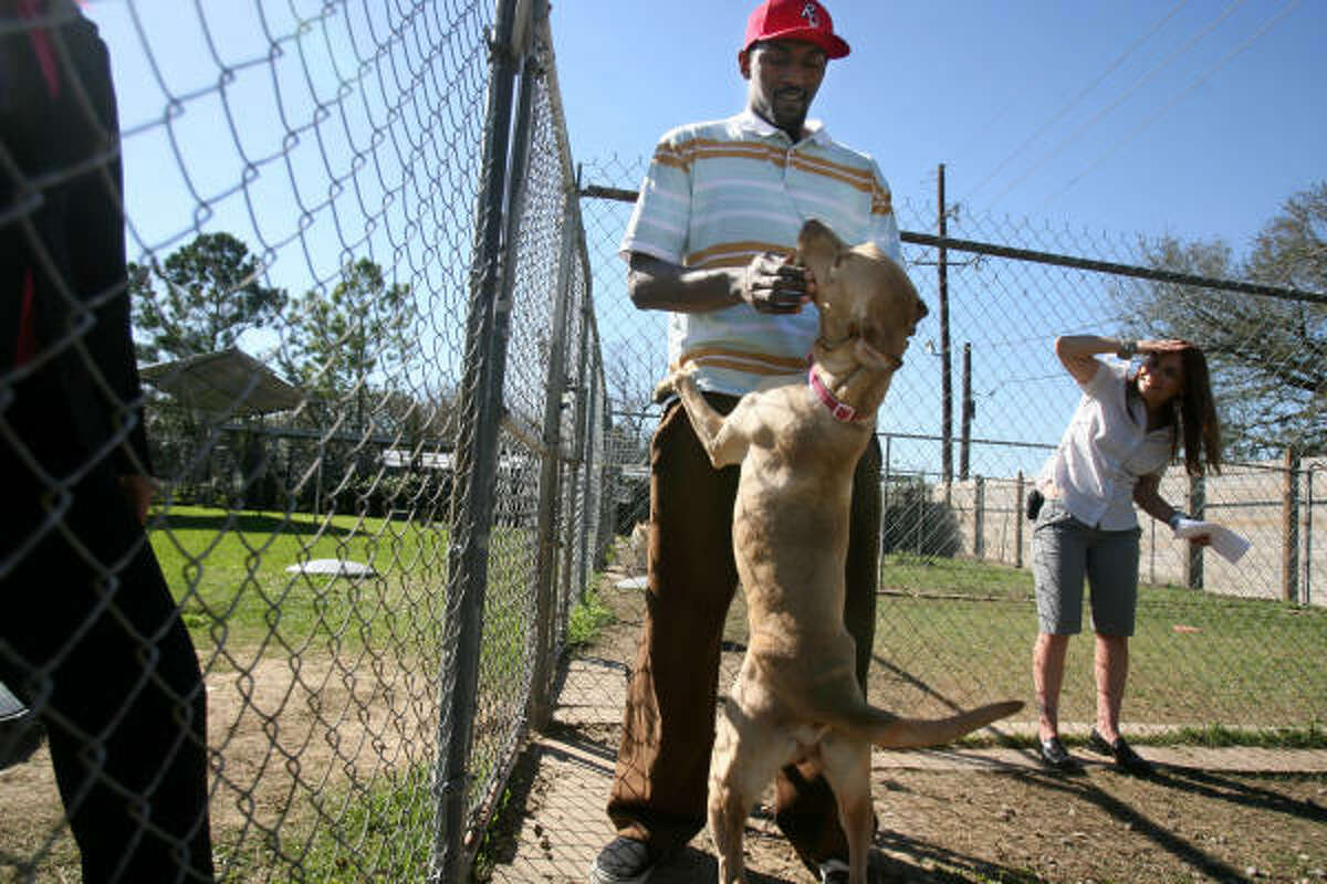 Rockets forward Ron Artest plays with a dog during a tour of the Houston Humane Society facilities.