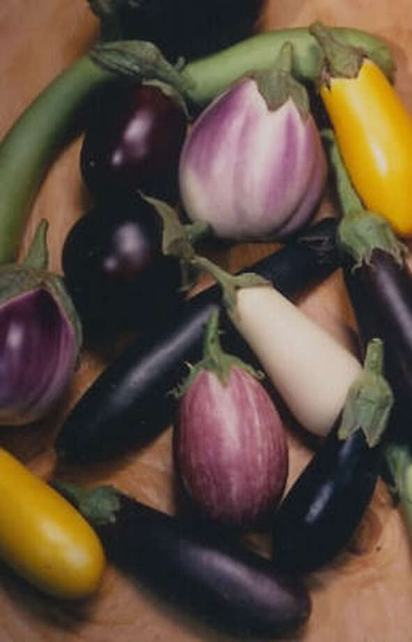 Eggplant mix. Photo: National Garden Bureau