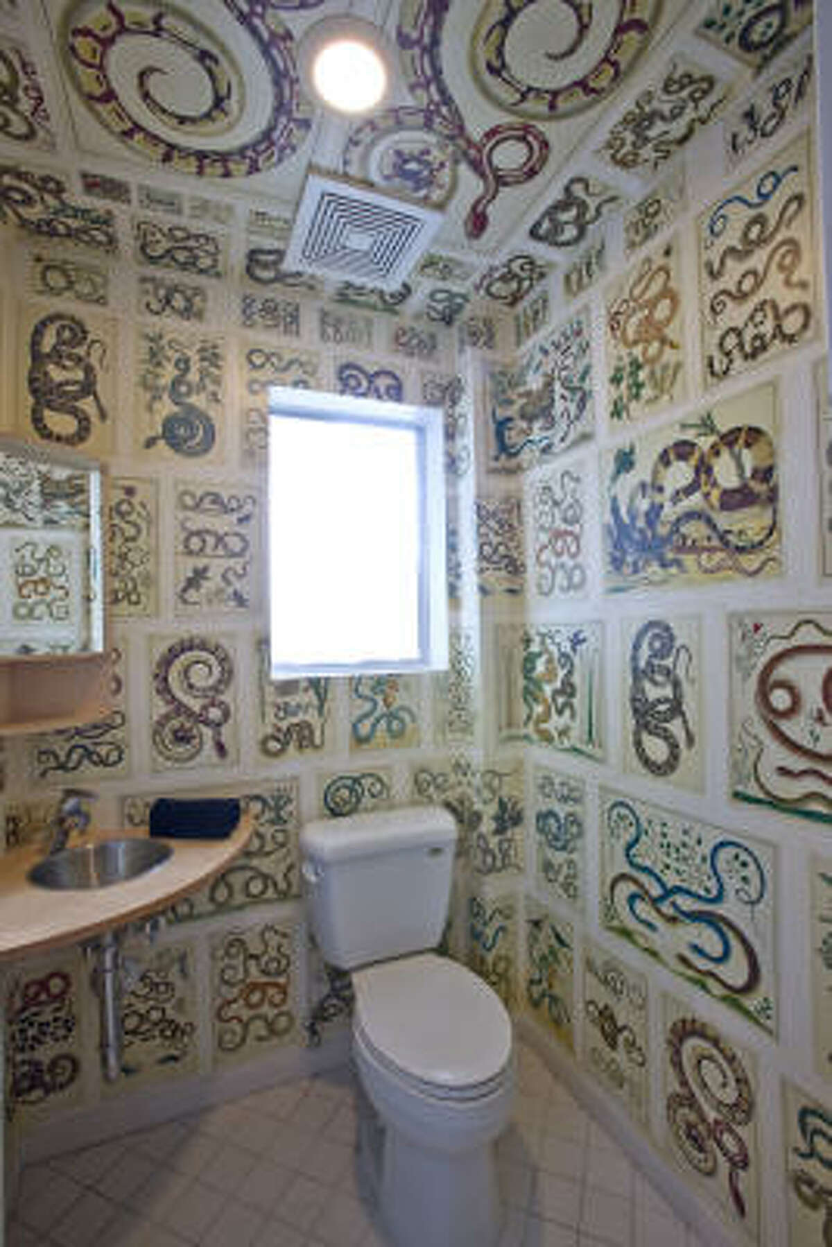Interior designer David Stone created slithery walls for photographer Joe Aker's bathroom.