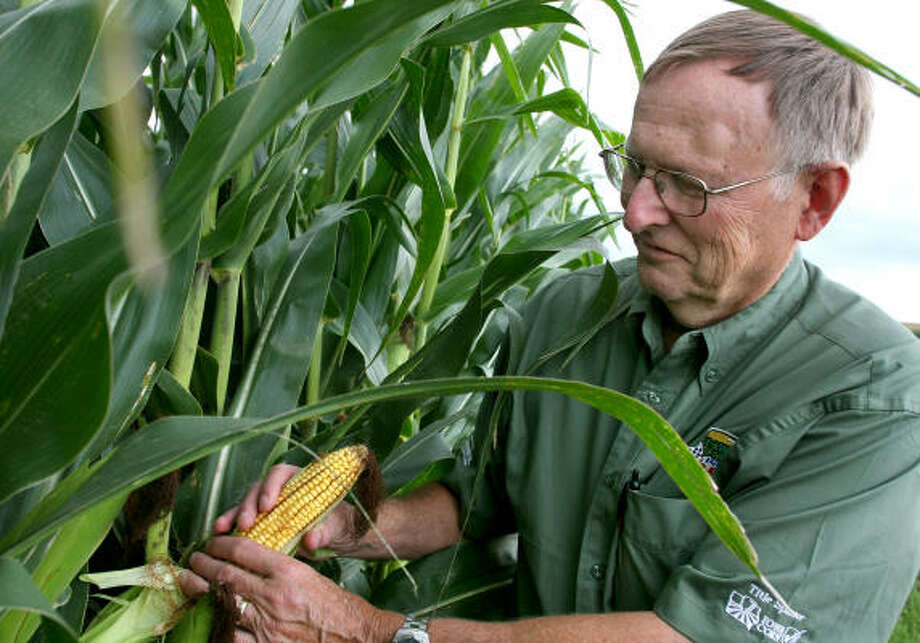 "Daryl Haack, director of the National Corn Growers, sees advantages in having oil companies invested in the ethanol business ""because maybe they won't fight it so hard."" Photo: Dave Eggen, For The Chronicle"