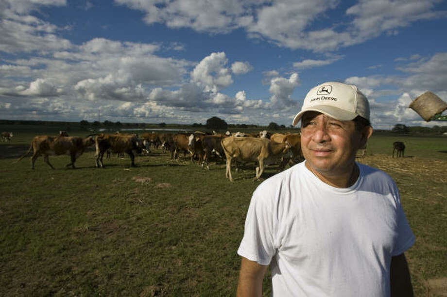 Nelson Jiménez owns a Houston company that repairs hundreds of apartment complexes, but on weekends he heads west to tend cattle on his SA Bar Ranch in Flatonia. The 800-acre spread is the fulfillment of the El Salvador immigrant's boyhood dream. Photo: James Nielsen, Chronicle