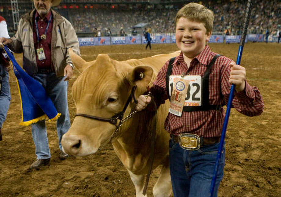 """Chris Barton's """"Yellow Jacket"""" was named winner in the Grand Champion Steer judging at the Houston Livestock Show and Rodeo. Photo: Steve Campbell, Houston Chronicle"""