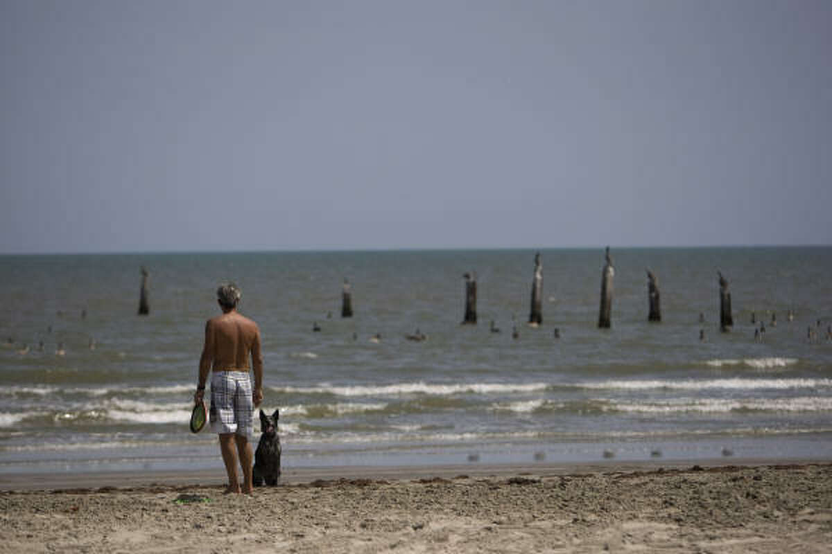 Next to what is left of the Balinese Ballroom, destroyed by Hurricane Ike, Galveston resident Dan Cobb plays Frisbee with his dog, Jack, on the island's beach Wednesday.
