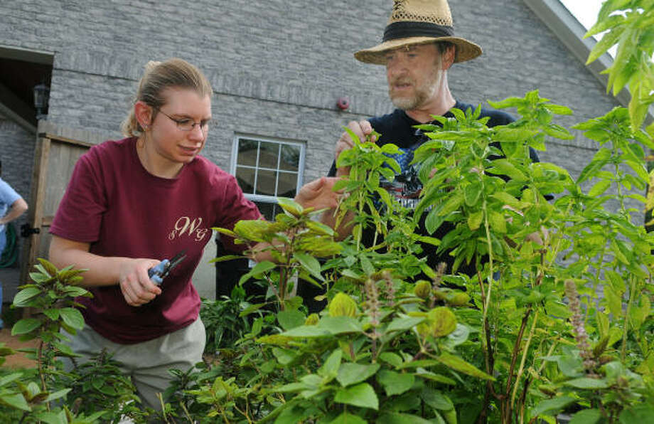 Kathryn, 25, left, cuts basil from the garden at the Village Learning and Achievement Center in Kingwood with help from Chris Brennan of Kingwood, the center?s assistant gardener and head maintenance man. Photo: Jerry Baker, For The Chronicle