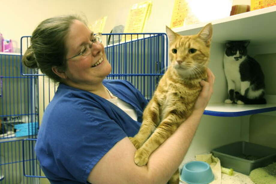 """Jessica Marks of Katy holds """"Cody,"""" who stretches to see what's happening at the Citizens Animal Protection shelter at 11925 Katy Freeway. Photo: Suzanne Rehak, For The Chronicle"""