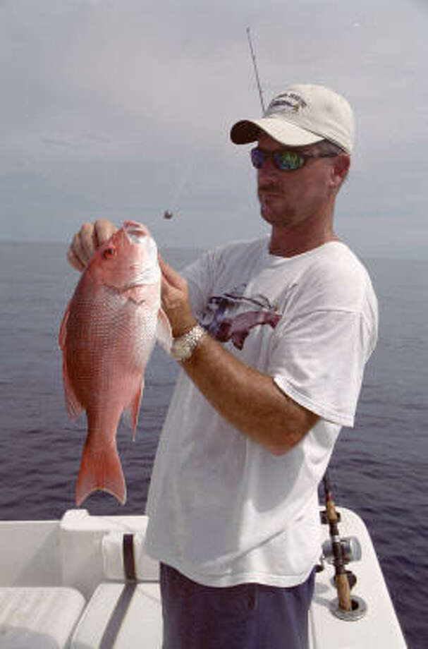 The 2009 recreational fishing season for red snapper in federally controlled waters of the Gulf of Mexico is set to open June 1 and run for 76 days, through Aug. 15. Photo: Joe Doggett, Houston Chronicle