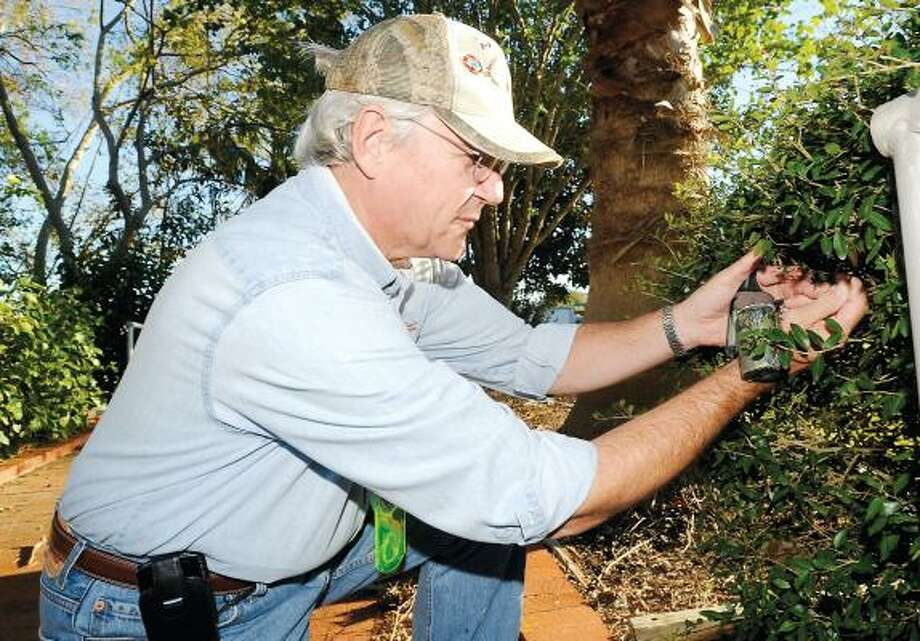 John Boettinger removes a hidden cache last month at the Abner Jackson Plantation in Lake Jackson. Boettinger says the hobby can be a great way to spend time with the family. Photo: HOLLY PARKER PHOTOS, THE BRAZOSPORT FACTS