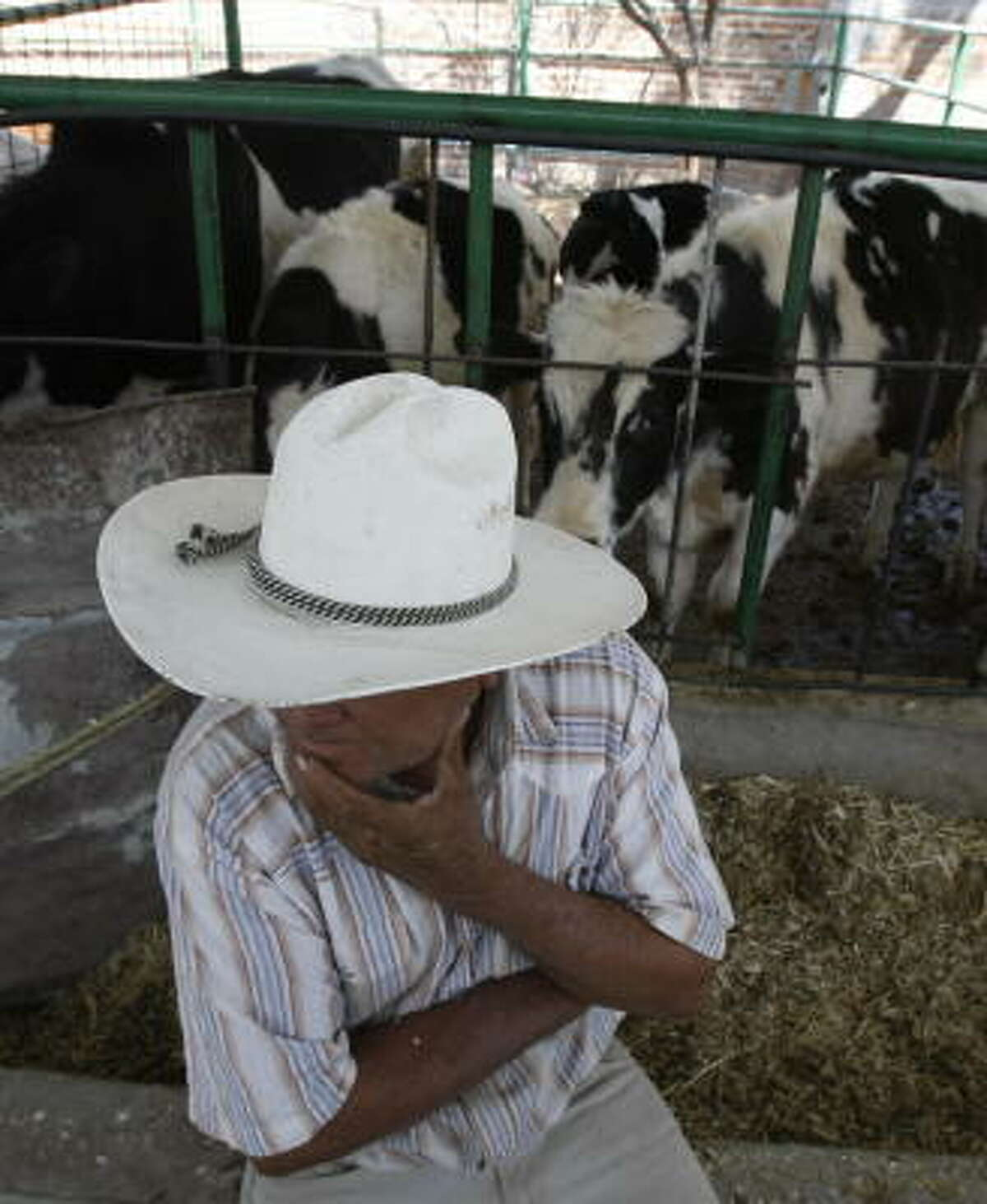 Natividad Lerma, 67, works on a ranch outside Leon in Guanajuato, Mexico, where dairy farmers are offering milk to wholesalers collectively so they can demand a higher price.