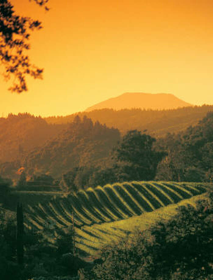 Napa Valley is awashed in a golden veil at sunrise. Photo: Brent Miller, WineCountry.com