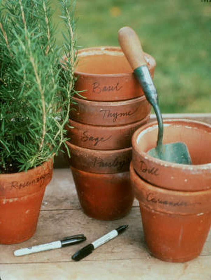 A little bleach and water can help get rid of mineral buildup on terra cotta pots. Photo: Dana Gallagher