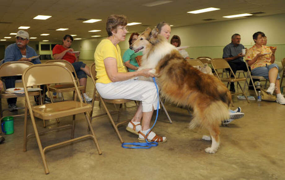 BEST FRIENDS: Donna Mackert pets her dog ?April? at a recent Baytown Kennel Club monthly meeting. Members often bring their dogs to the meetings. Photo: Kim Christensen, For The Chronicle