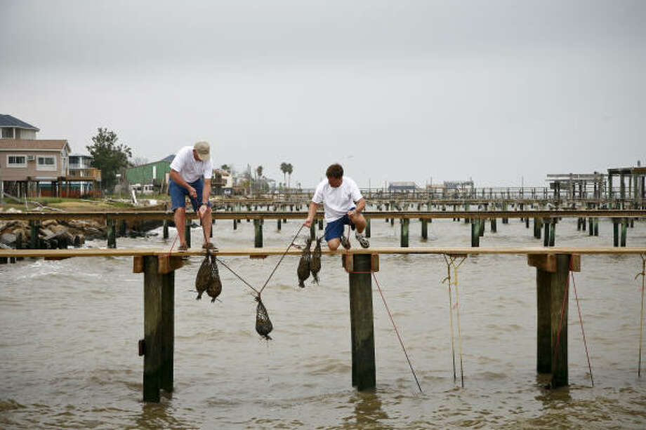 San Leon residents Marvin Peyton, left, and Greg Tate suspend mesh bags full of oyster shells from a fishing pier to be used as nurseries for oysters and other wildlife. Photo: Michael Paulsen, Chronicle