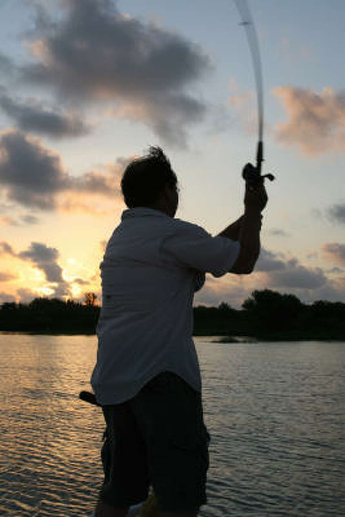 Populations of almost all inshore fish targeted by Texas' million-plus coastal anglers are as high or higher than they have been for more than three decades, according to state fisheries officials. Prospects look particularly good for anglers targeting speckled trout, redfish and black drum.