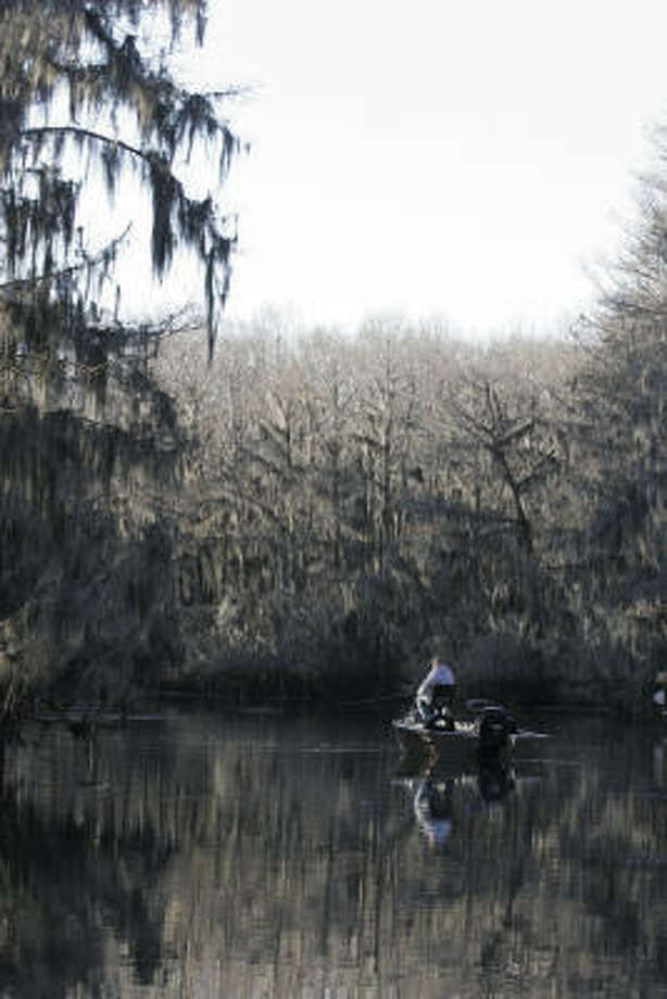 Originally formed by natural events, Caddo's future rests on how humans address issues such as invasive species, water quality, inflows and lake levels. Photo: Shannon Tompkins, Chronicle