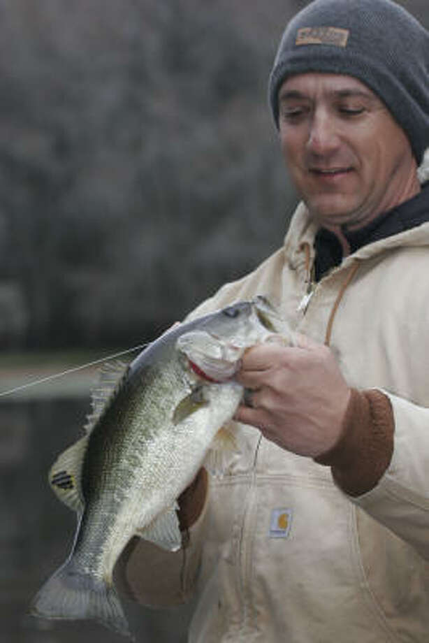 Fishing guide Paul Keith hefts one of three dozen largemouth bass caught from Caddo Lake on a chilly morning earlier this month. Fishing on the Caddo remains good despite mounting problems facing the iconic lake in northeast Texas. Photo: Shannon Tompkins, Chronicle