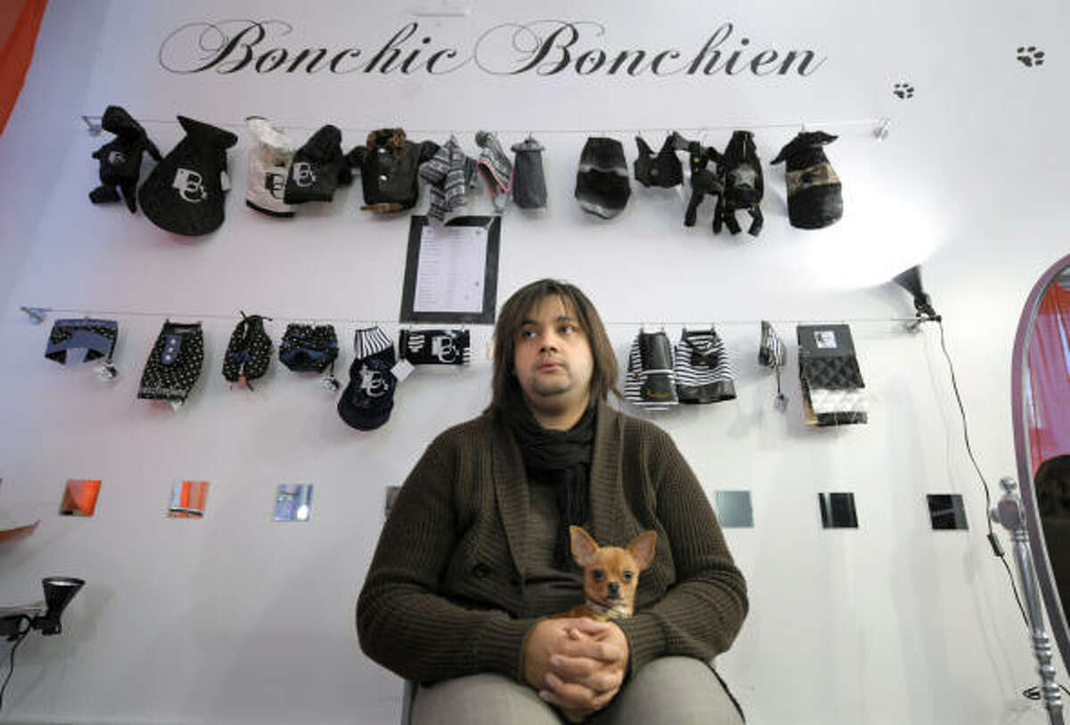 Edgar the Chihuahua waits in French designer Celine Boulud's Bonchic bonchien boutique for dogs in Lyon.