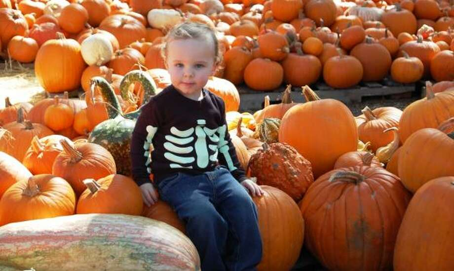 My Little Pumpkin! Photo: CoryW, Chron.commons