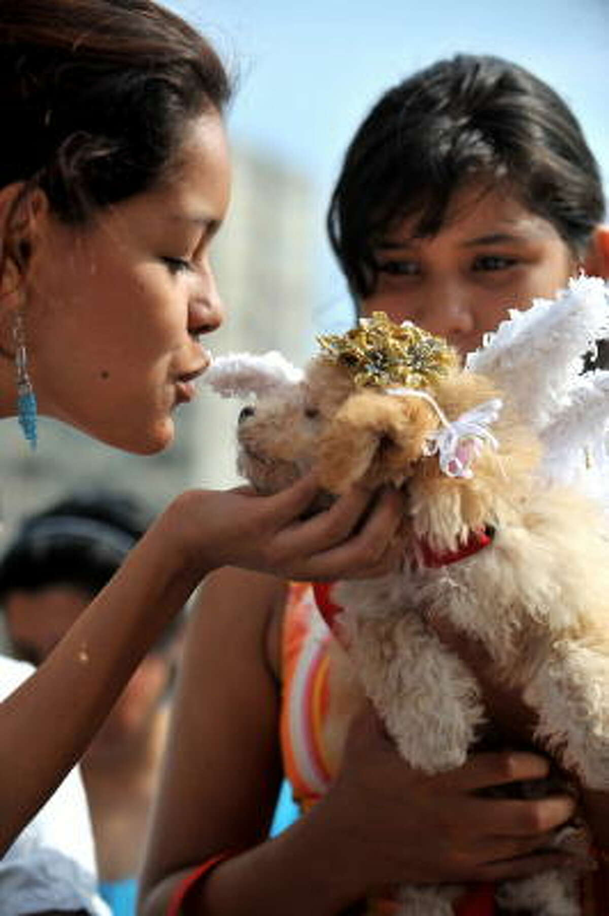 A girl kisses a dog dressed as an angel on Sunday in Colombia during the World Animal Day.