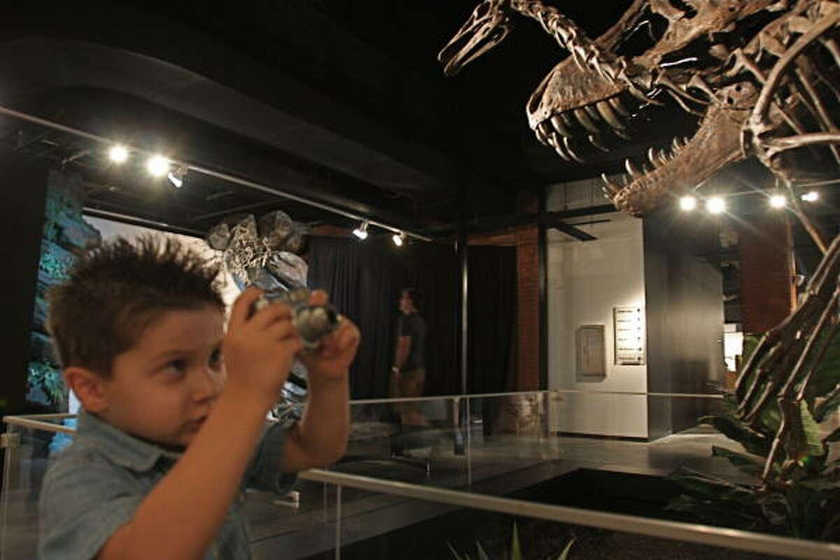 Maximillian Delome, 4, of Missouri City uses his small digital camera to photograph a huge model of Tyrannosaurus Rex, or the