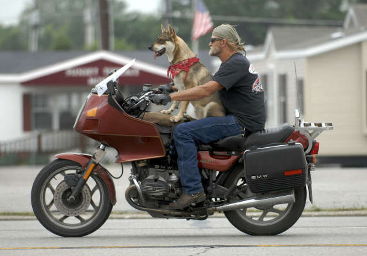 Garry Henry cruises along in Henderson, Ky., with his dog Savannah. Henry said he's been riding tandem with dogs for 20 years. He said has logged over a million miles with the animals.