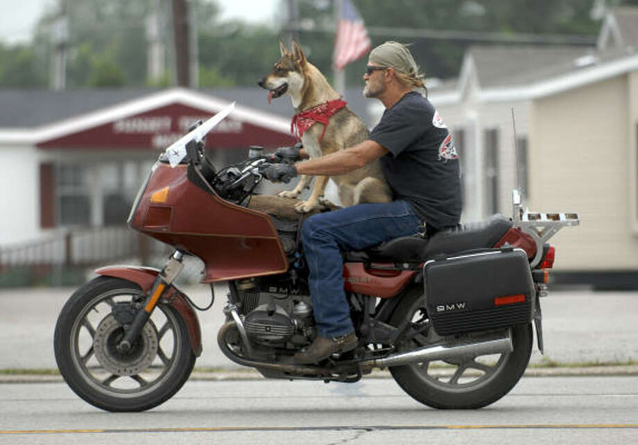 "Garry Henry cruises along in Henderson, Ky., with his dog Savannah. Henry said he's been riding tandem with dogs for 20 years. He said has logged over a million miles with the animals. ""This is just the beginning of our adventures,"" he said referring to how young Savannah is. Photo: DARRIN PHEGLEY, AP"