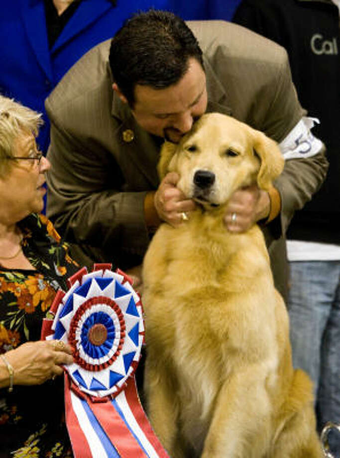 "Dog show handler Clint Livingston shows his appreciation for a Golden Retriever named Champion of Toasty's Treasure Island who won the Reliant Park World Series of Dog Shows' Best in Show. Livingston is from Brighton, Colorado and ""Treasure"" is owned by Pam and Jerry Oxemburge who live in Boca Raton, Florida. Photo: Nick De La Torre, Chronicle"