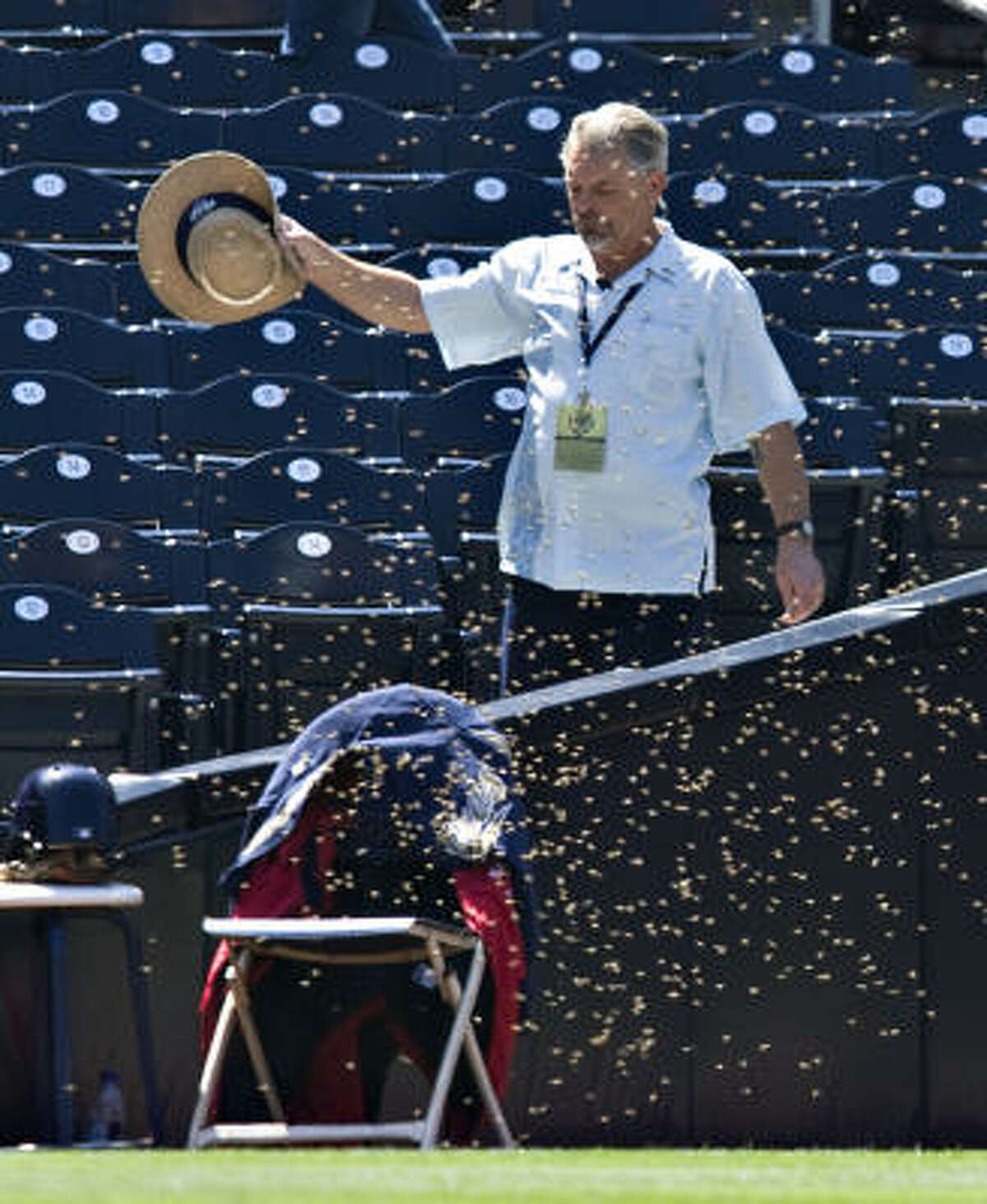 An unidentified usher tries to move a swarm of bees as they cover a chair in left field.