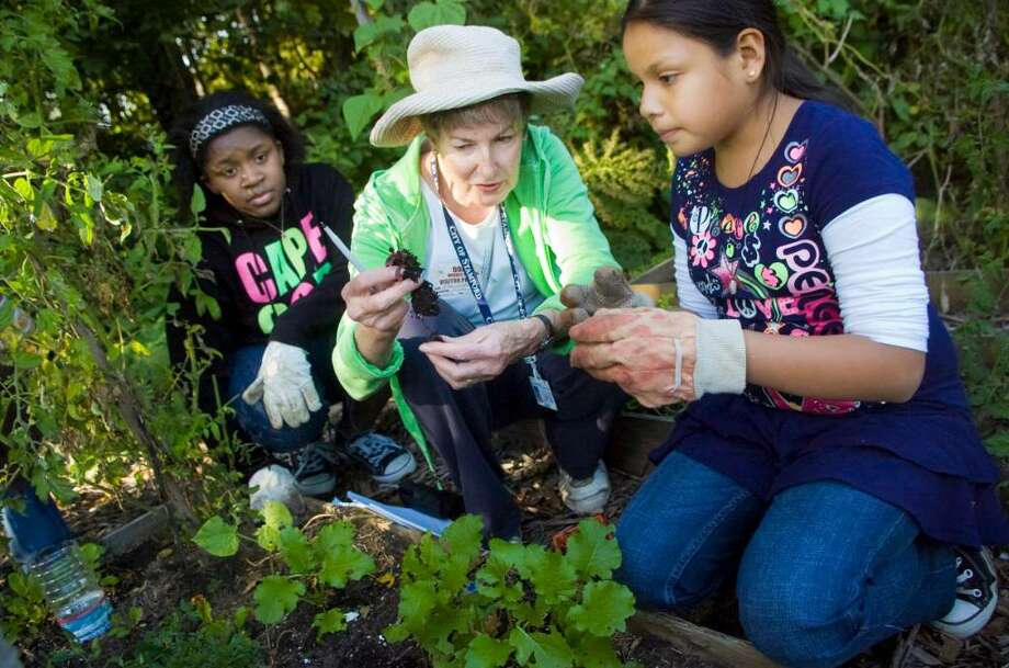 Pam Sloane, a retired French teacher, center, shows students Shalyn Coley, 11, left, and Luz Victorino, 10, right, how to plant beets during a meeting of the garden club at Dolan Middle School in Stamford, Conn. on Tuesday, Oct. 6, 2009. Photo: Chris Preovolos / Stamford Advocate