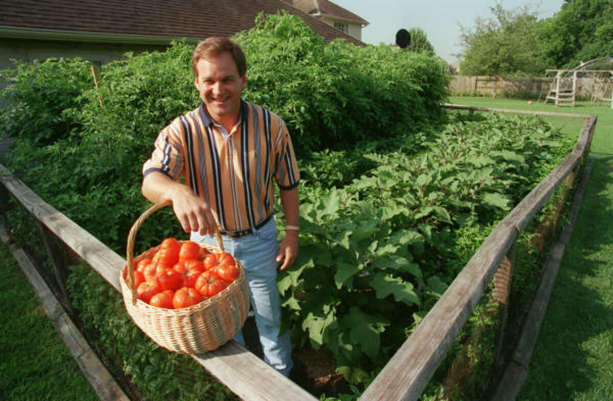 John Turner's vegetable garden brings harvests of delicious tomatoes, eggplants, peppers and basil, too.