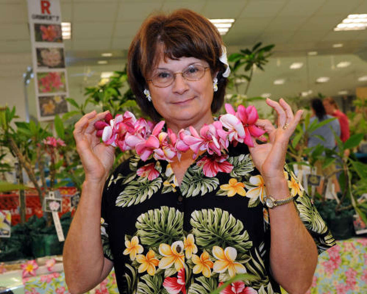 Kay Norwood shows off her lei at the Plumeria Society Show and Sale in Seabrook.