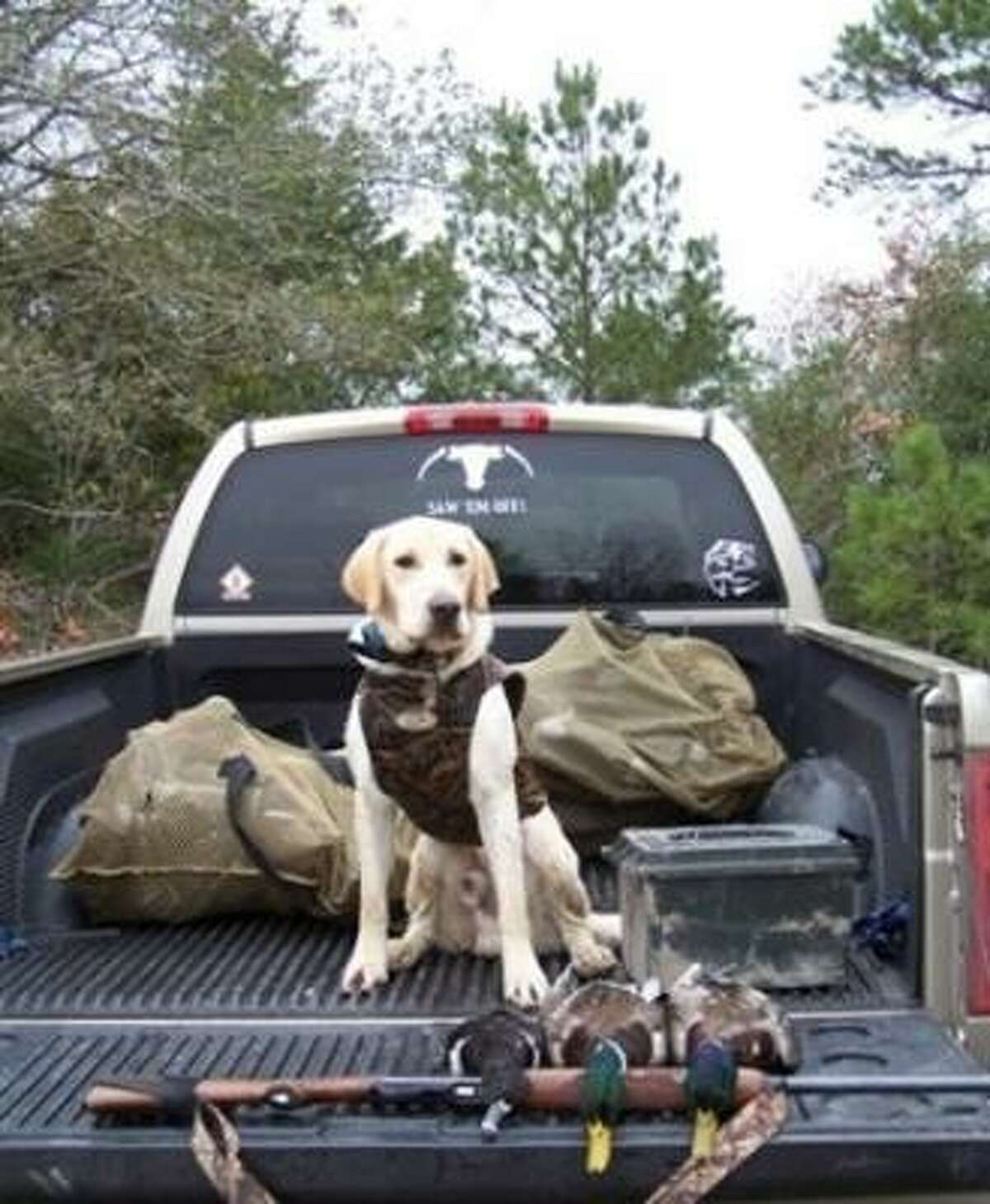 Remington ready for her first hunt.