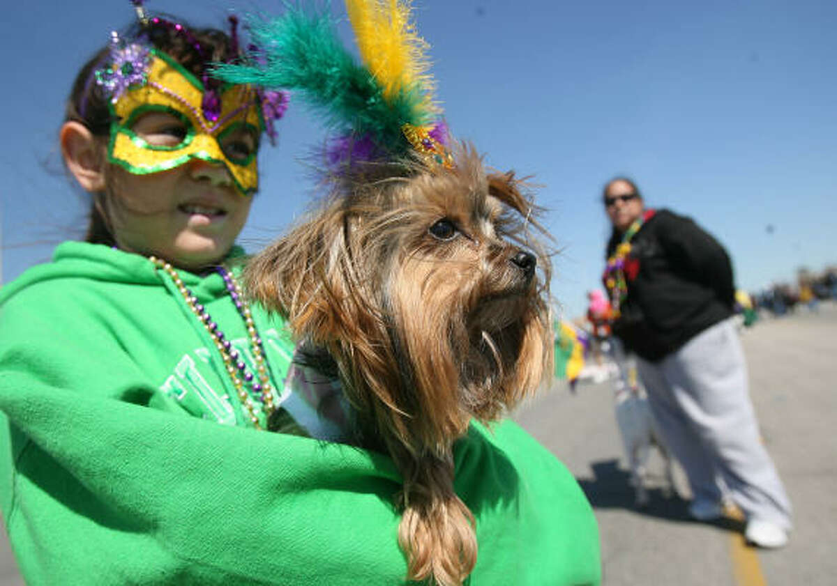 Isabella Kirk, 8, carries her Yorkie, Fancy, in their first Barkus parade. This year the parade followed the Seawall because of hurricane damage in the neighborhood where the parade proceeded in years past.