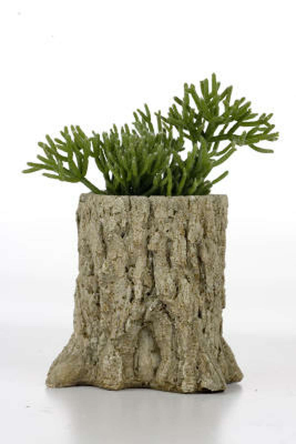 Faux bois plant holder $17, from Thompson+Hanson in 2007. Faux bois artist Donald Tucker   Submit your photos   Plant Database   HoustonGrows.com