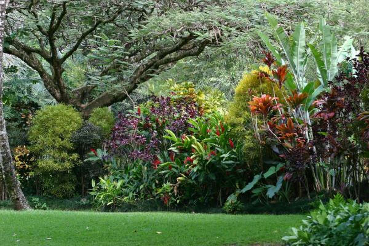 At the Waimea Valley Audubon Center, the diverse plants of Oahu Island can be seen.