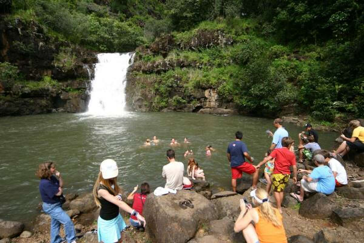 You can splash in the water at the basin of the Waihi Falls within the Waimea Valley Audubon Center.