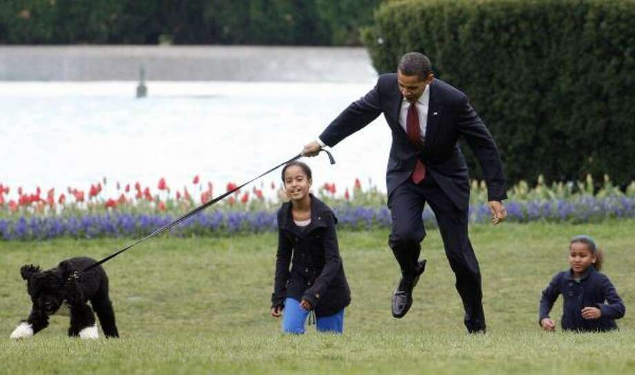The president struggles to keep up with the family's new dog. Photo: Ron Edmonds, Associated Press