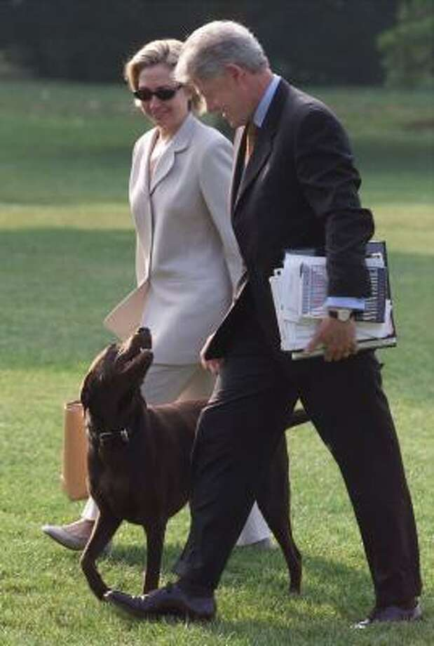 Forced to choose between their warring cat and dog, the Clintons kept their rambunctious chocolate lab Buddy when they moved from the White House to New York. Buddy was killed by a car outside the Clintons'  home. Photo: RON EDMONDS, AP