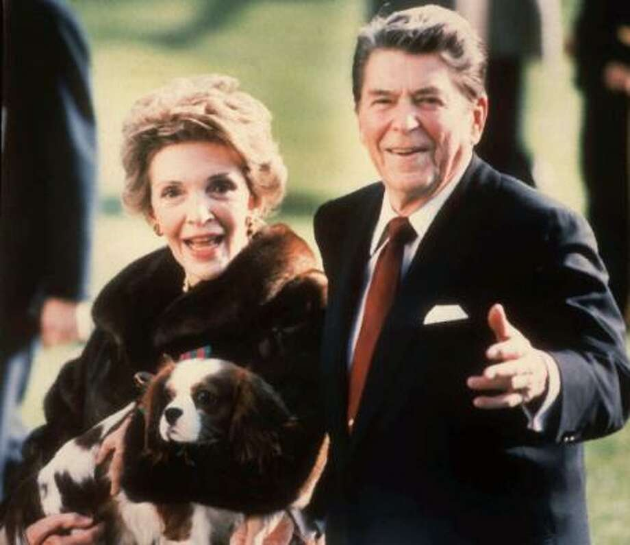 Rex, a King Charles Cavalier spaniel, was often seen dragging Ronald Reagan away from reporters asking questions. Rex replaced Lucky, a Bouvier des Flandres, who was sent to live on the Reagans' ranch when she got too big. Photo: DENNIS COOK, AP