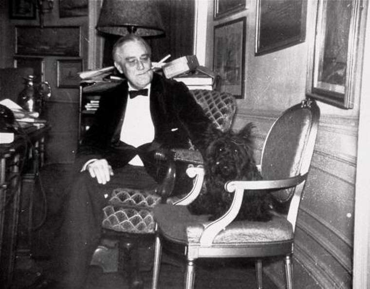 President Franklin D. Roosevelt originally called his Scottish terrier Big Boy. Then Franklin decide