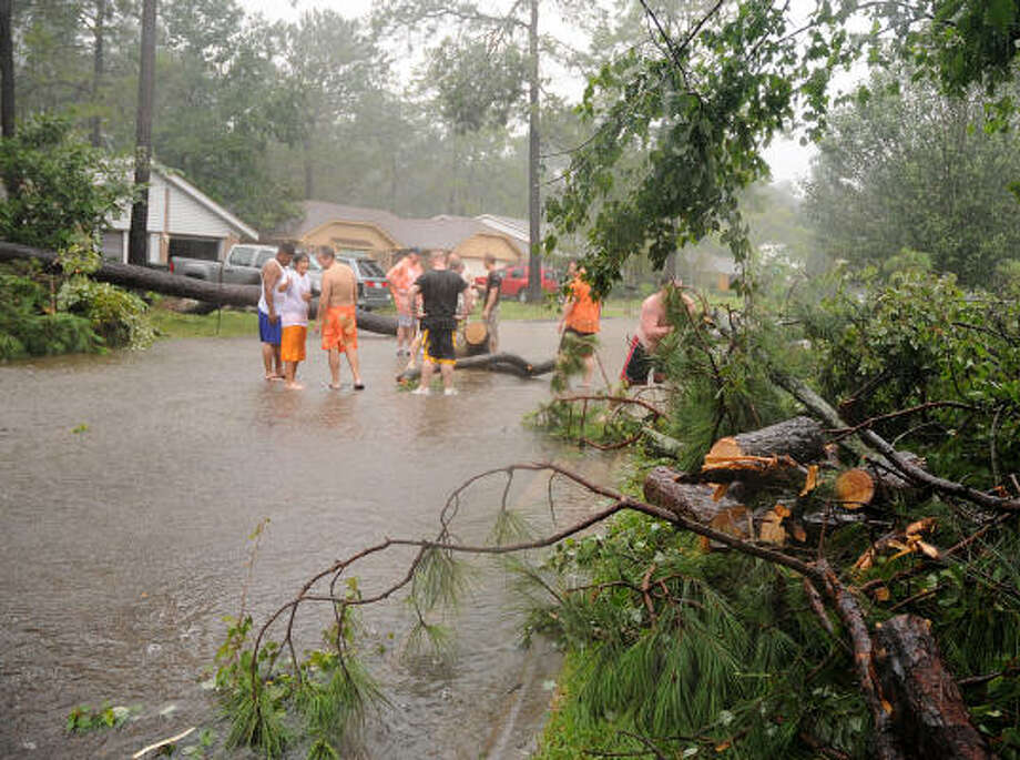 Neighbors band together to remove two trees that fell across Tickner Street, near 
