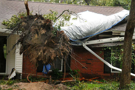 A tree falls on two houses, on Lilly Boulevard near Thompson Street, in Conroe. The base of the tree landed on one home and the rest landed on the next door neighbor's house. Photo: David Hopper, For The Chronicle