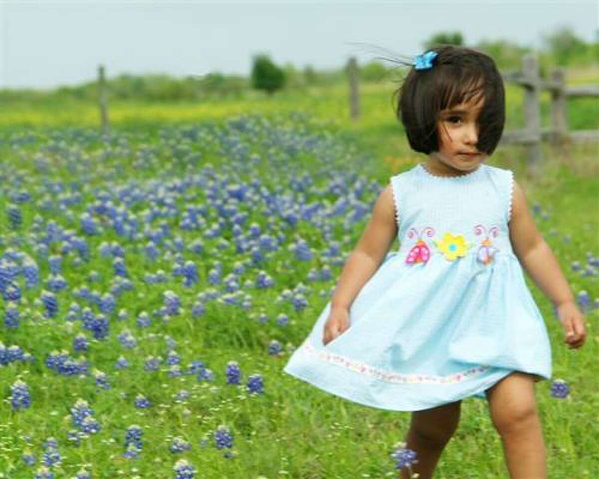 brenham bluebonnets 2009 To vote for your favorite go to MomHouston.com or click here.