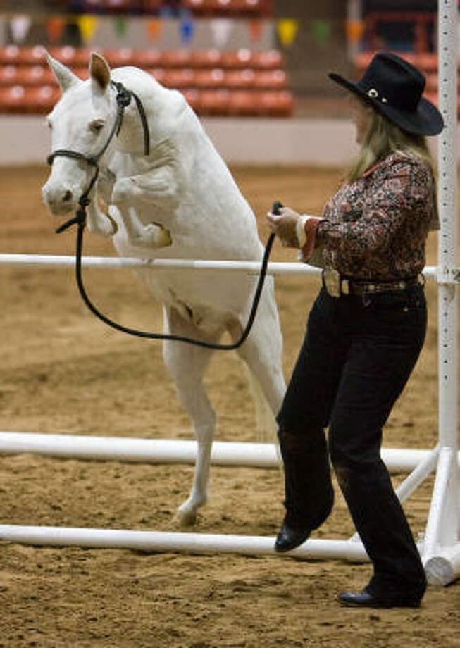 The Houston Livestock Show And Rodeo 2009 Houston Chronicle
