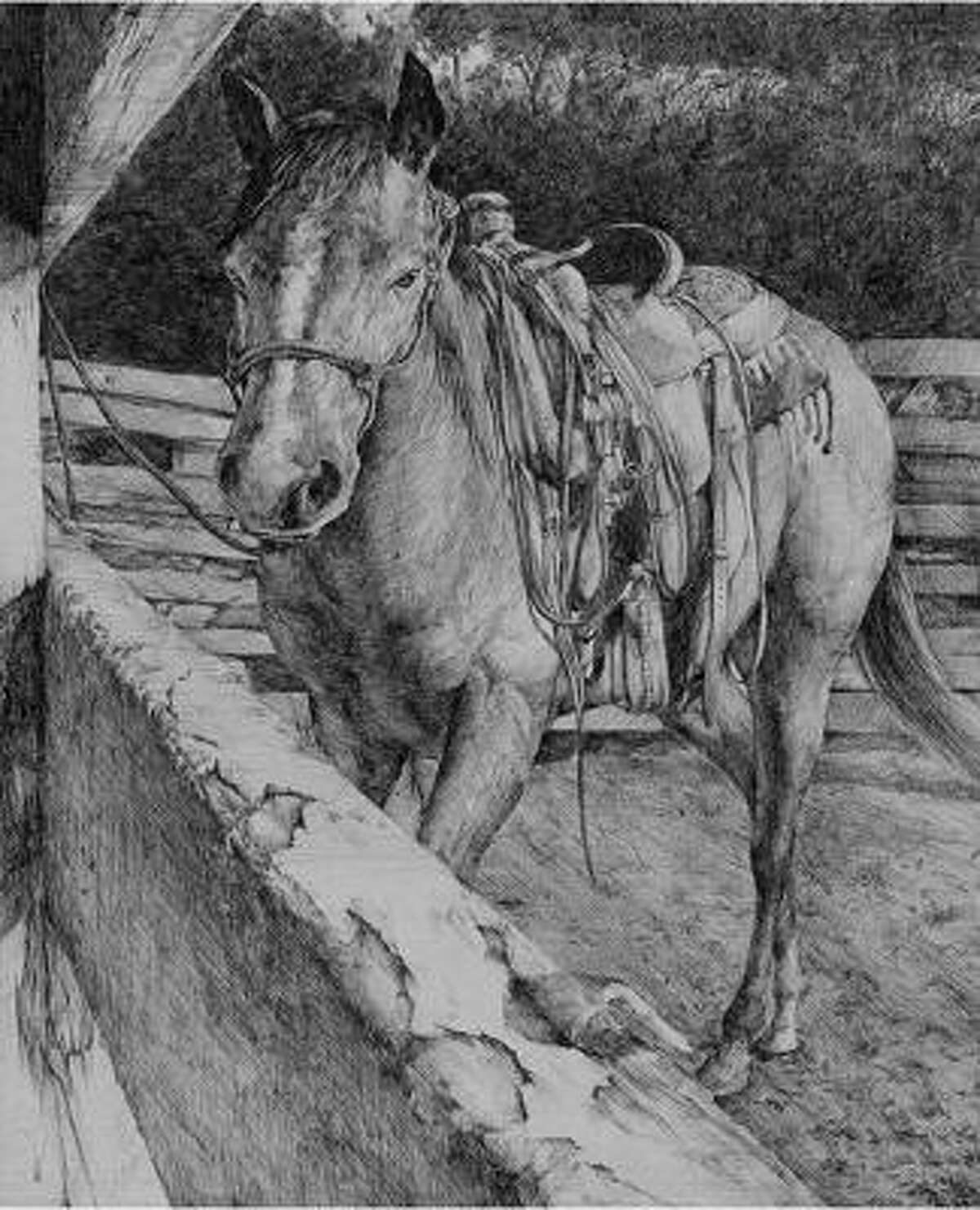 Suk H. Kim, Spring Branch ISD CLASS CHAMPION MONOCHROMATIC DRAWING