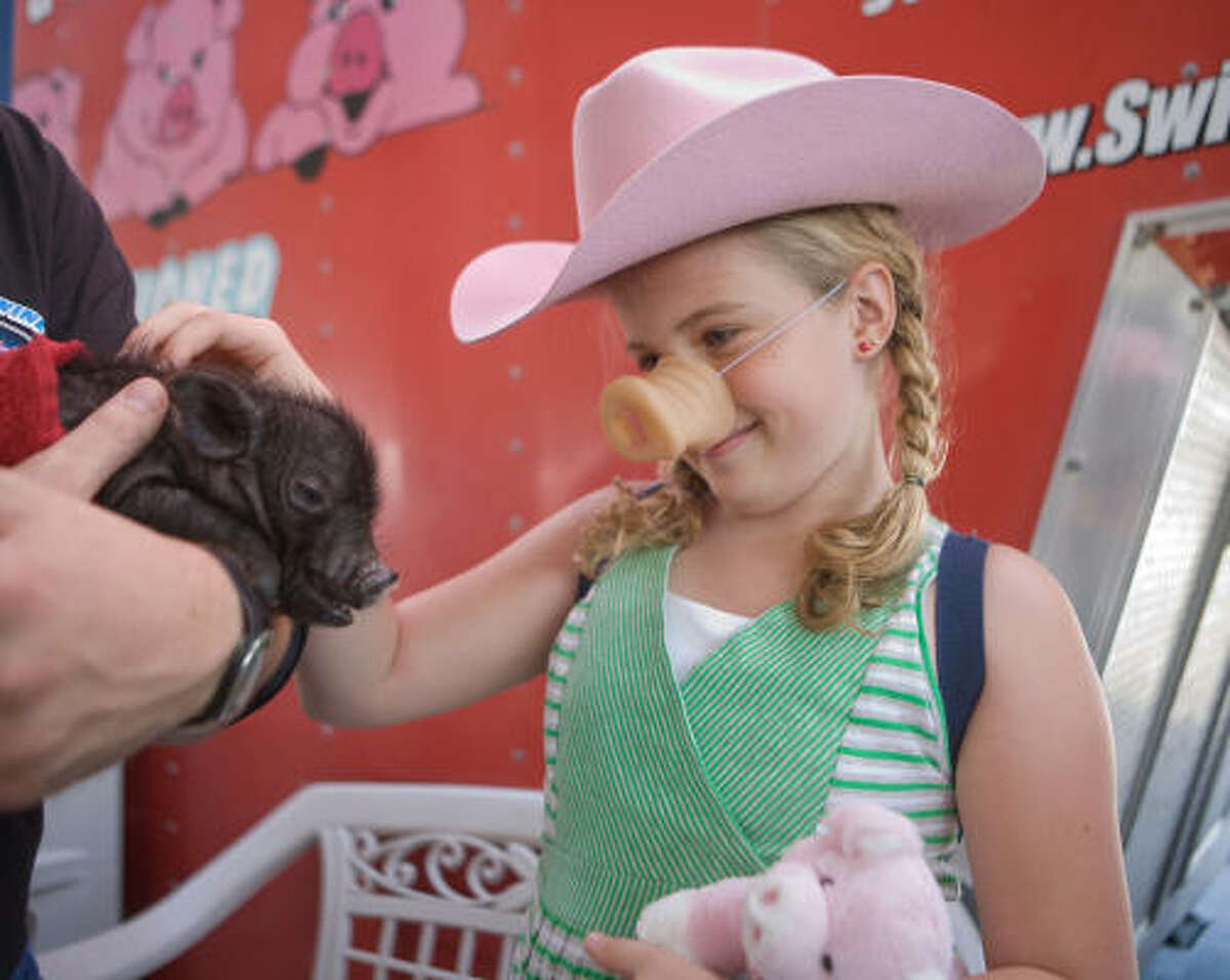 Windsor Graham, 10, from Huntsville, Ala., showed her inner Irish while petting a pig at the Houston Livestock Show and Rodeo.