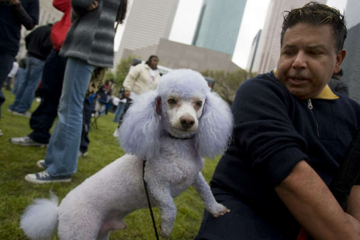 Adam Martinez waits in Sam Houston Park with his dog Gordy before participating in the 20th Annual AIDS Walk Houston on Sunday.