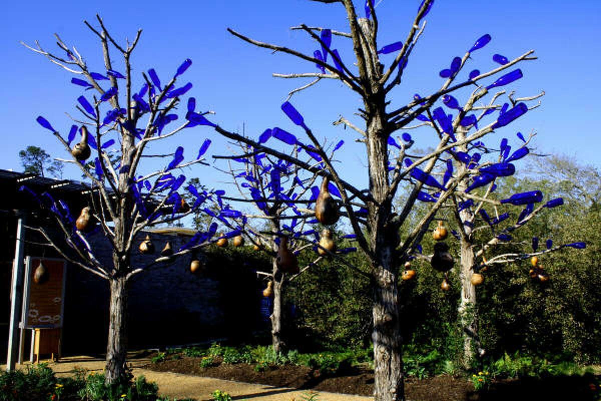 Cobalt-blue bottles inspired by the African Bottle Tree legends add a touch of whimsy to the children's garden.
